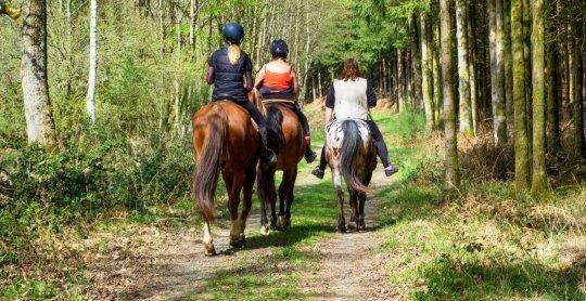 promenade cheval